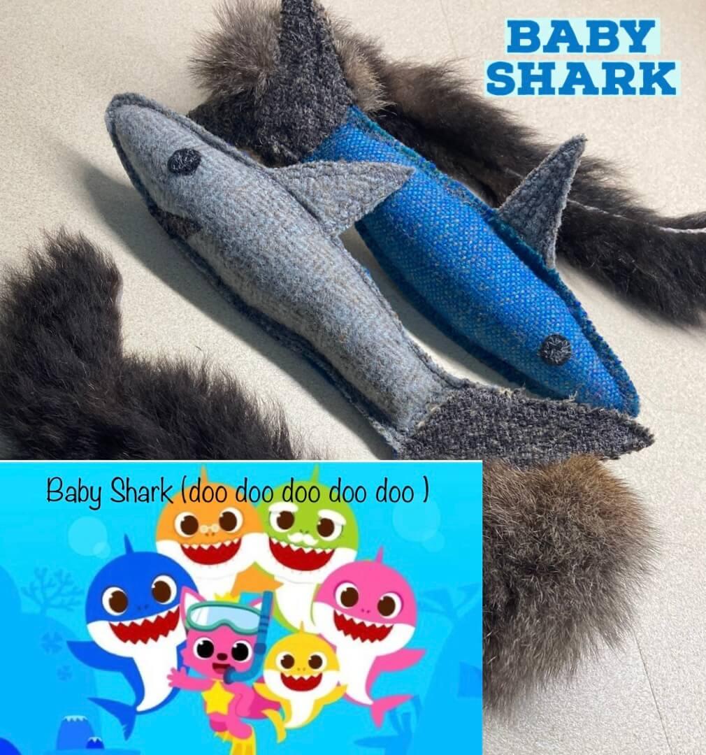 baby shark pet toy