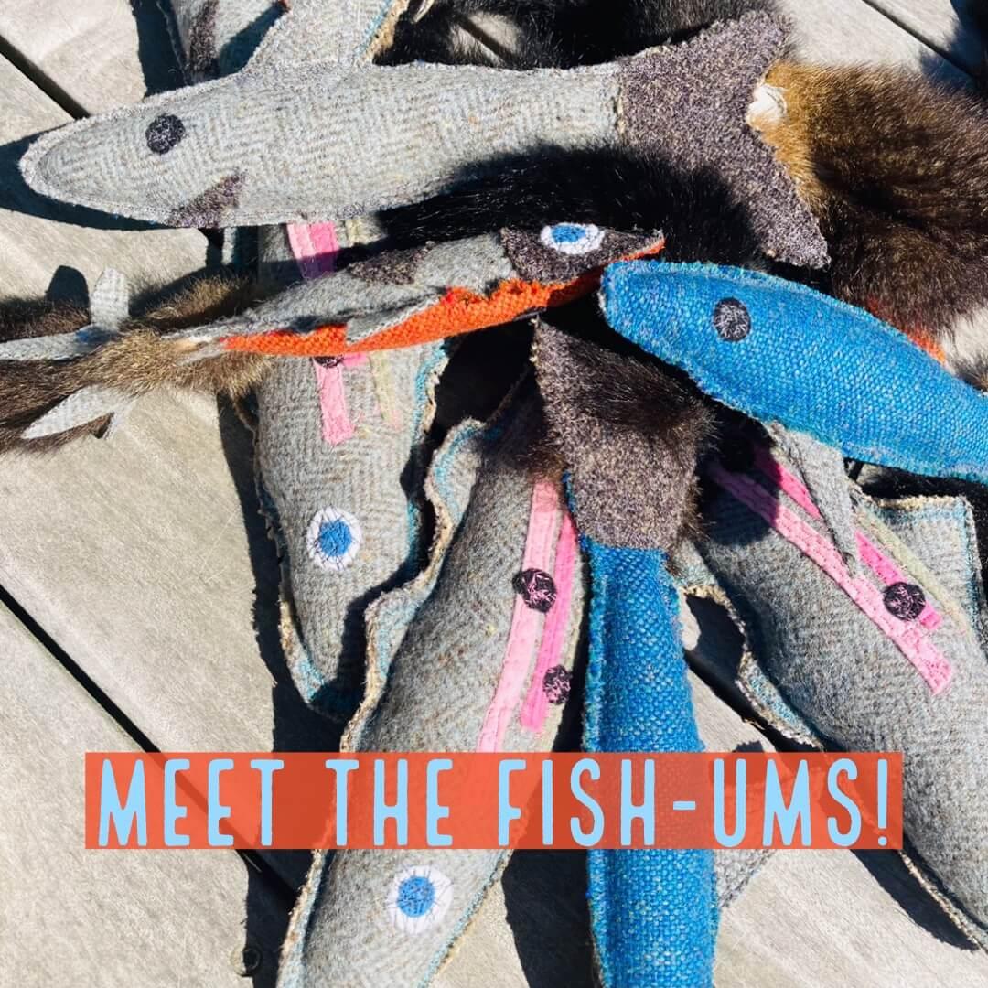 Homemade Fish Pet toys