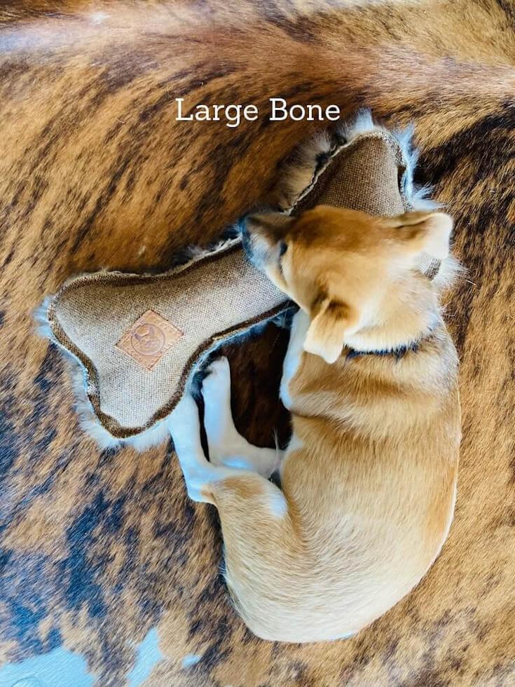 FunDiggityDog dog with large bone toy