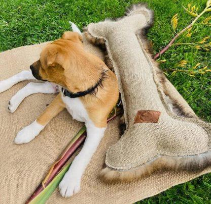 Homemade Giant Bone Dog Toys